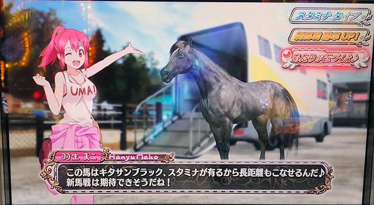 新台実践『G1優駿倶楽部2』育成馬選択